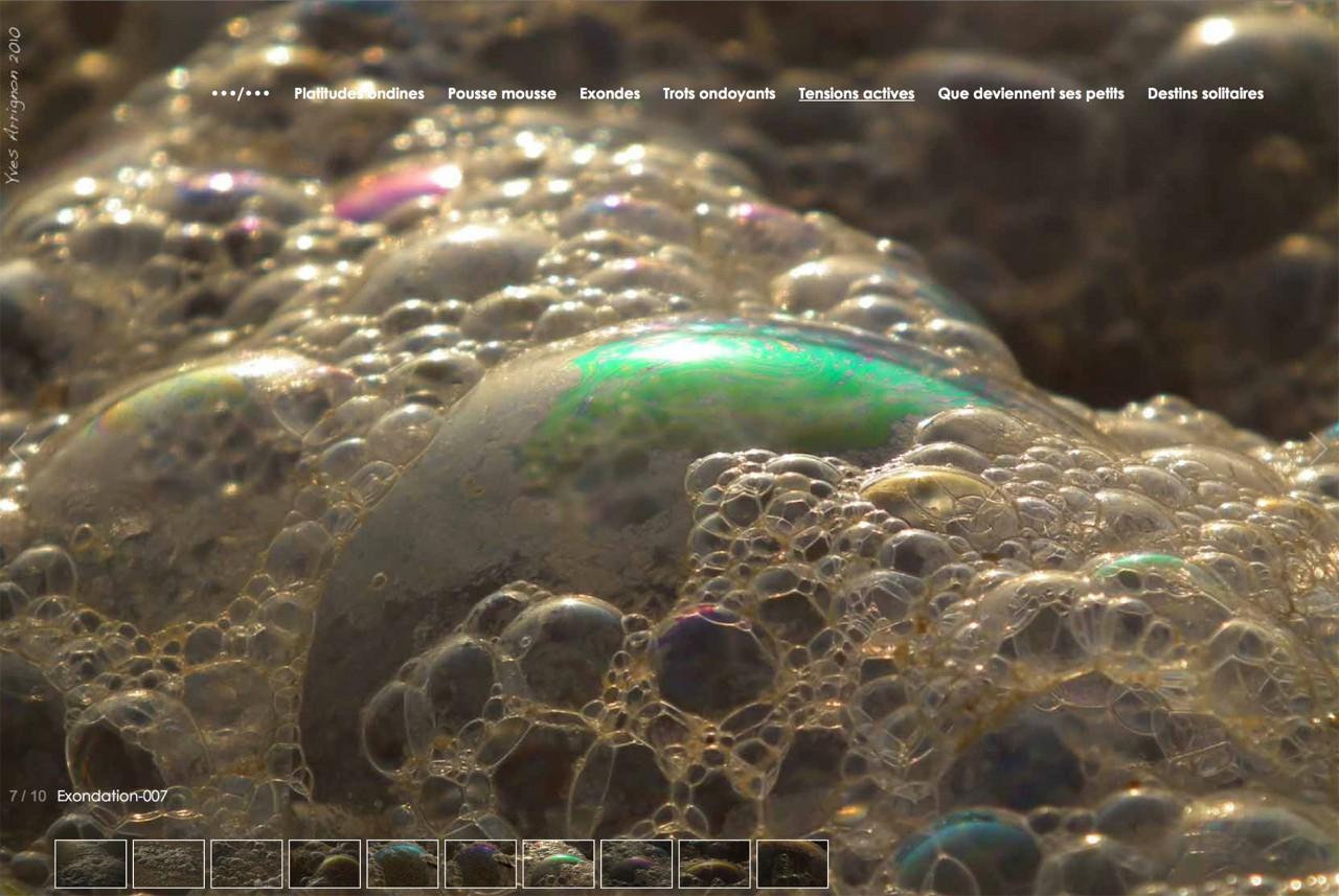Site web yves.arrignon.fr