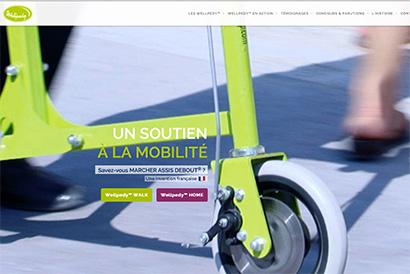 Site web wellpedy.com